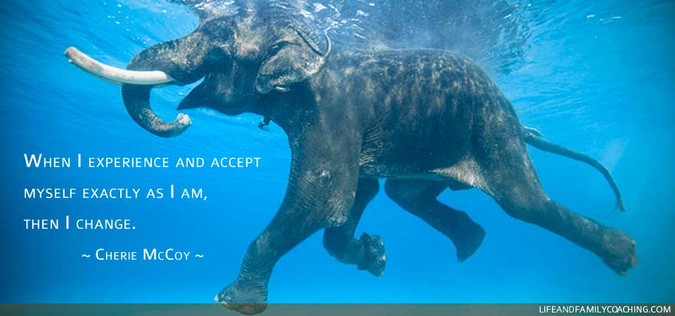 When I experience and accept myself exactly as I am, then I change.  ~ Cherie McCoy ~
